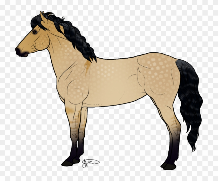 Of Horse Drawings Free Download Free Clip - New Forest Pony Drawing #364561