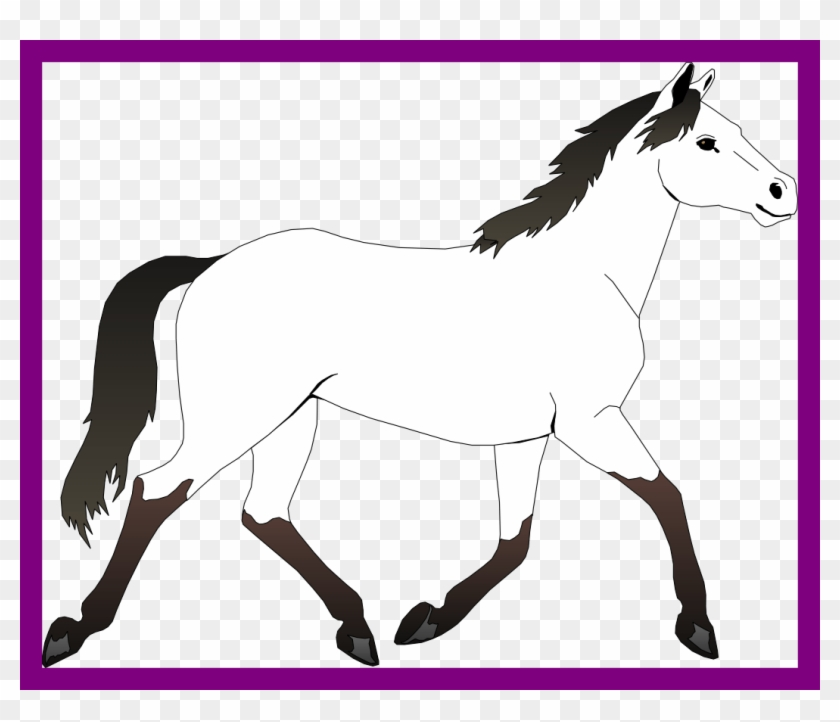 Incredible Black And White Horse Clipart Best Picture