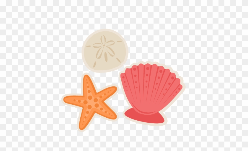 Large Seashells Cliparts And Others Art Inspiration - Sea Shell Clip Art #367134