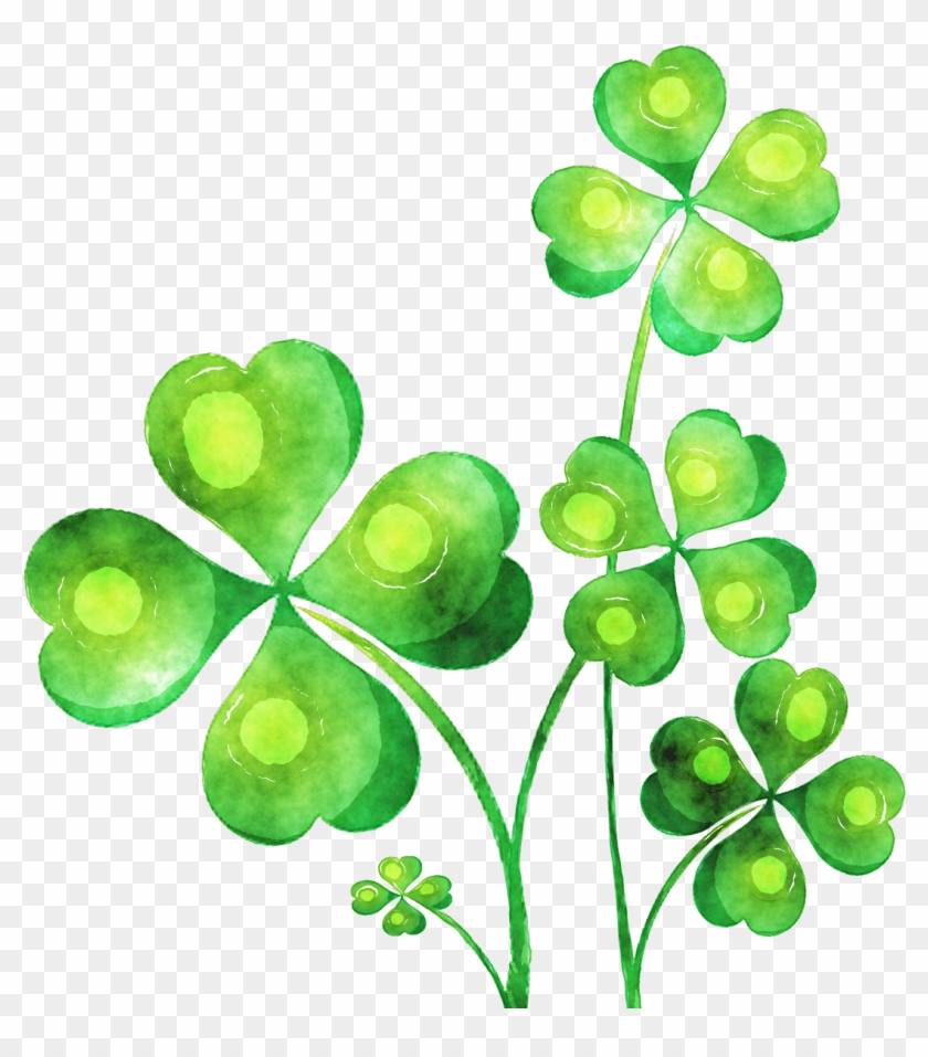 Watercolour Plant By Lavandalu - Happy Fathers Day Ireland #375662