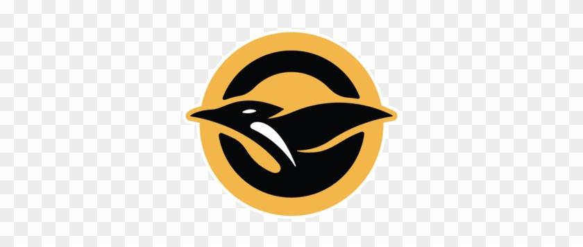 Chorus - Penguins Pittsburgh Gold Logo #377836