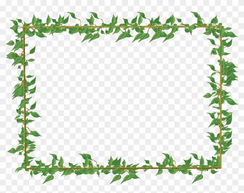 Vine Border Clipart Ivy Vine Clip Art Vine Border Green - Vine Border Png -  Free Transparent PNG Download - PNGkey