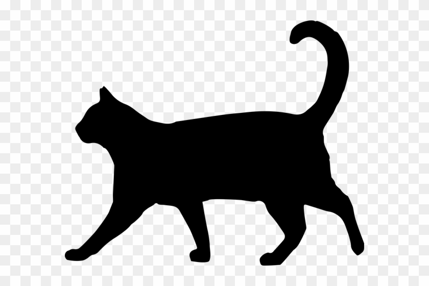 Pin By Roxy Ray On Animals Cat, Black Cats And Animal - Cat Walking Silhouette #380122