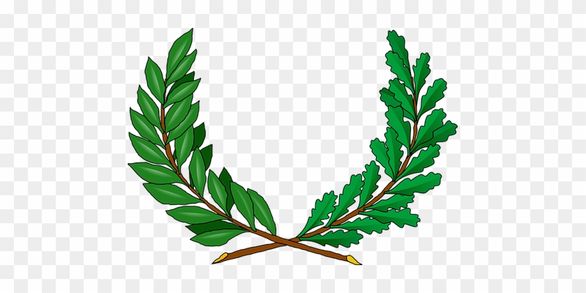 Vines, Green, Branches, Peace, Greek - Vine Coat Of Arms #380923