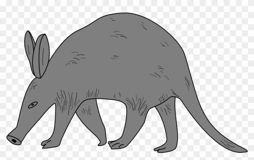 Cute Aardvark Cliparts Free Download Clip Art Free - Aardvark Clipart #381799