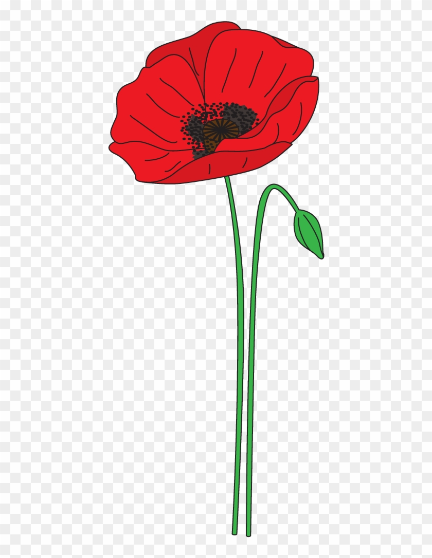 Poppy Clipart Anzac Poppy Anzac Day Poppy Clipart Free