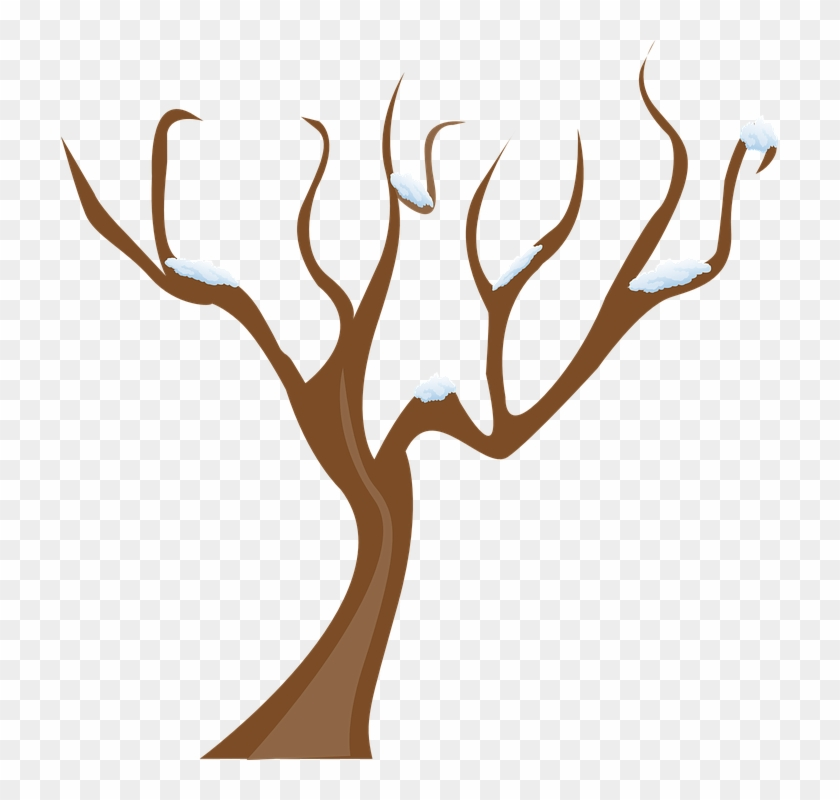 Spooky Tree Cliparts 14, - Tree Without Leaves Clipart #382187