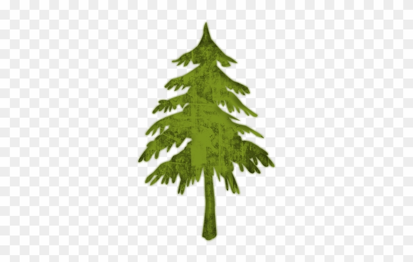 Evergreen Or Fir Tree 2 Icon - Pine Tree Icon Png #382250