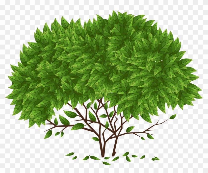 Tree Png Clip Art - Yellow Fir #382595