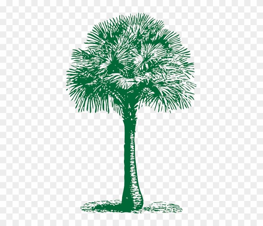 Fan, Outline, Palm, Tree, Plant, Automatic, Tropical - Palm Tree Beach Towel #382769