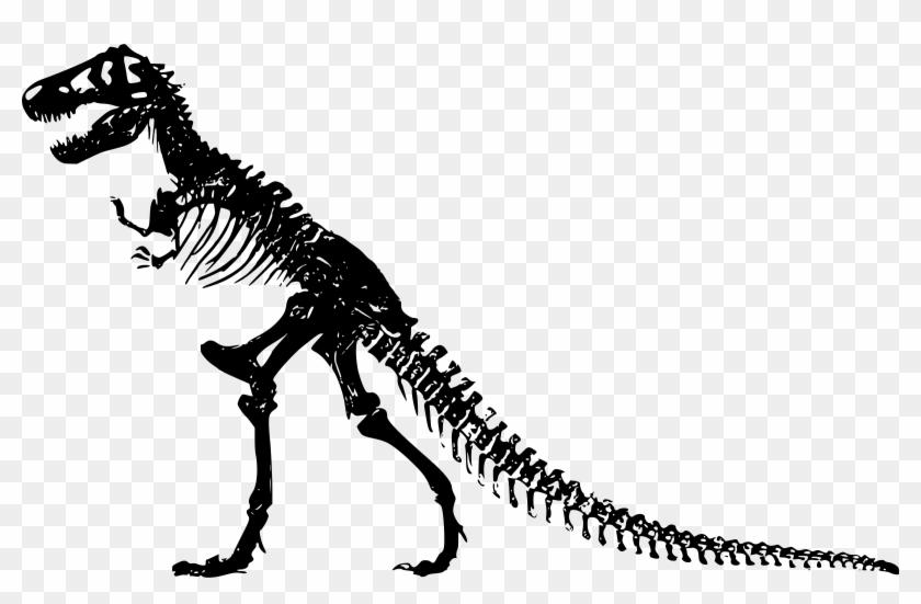 Powerpoint Template 2 Dinosaur Skeletons With Bones
