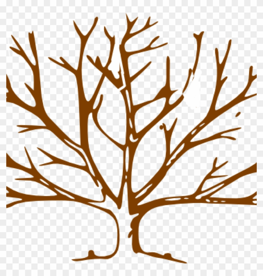 Bare Tree Clipart Brown Tree Clip Art At Clker Vector Tree Outline