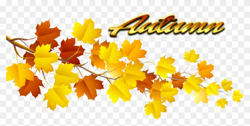 Autumn Leaves Png Pic - Autumn Leaf Png #383191