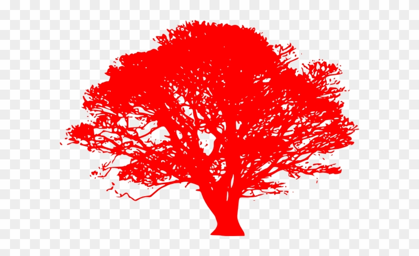 Red Oak Sillhoute Clip Art At Clker - Oak Tree Clip Art Black And White #383430