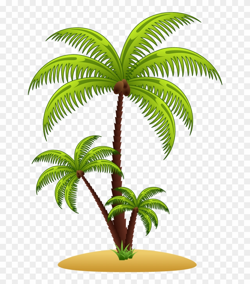 Arecaceae Euclidean Vector Tree Illustration - Arecaceae Euclidean Vector Tree Illustration #383472