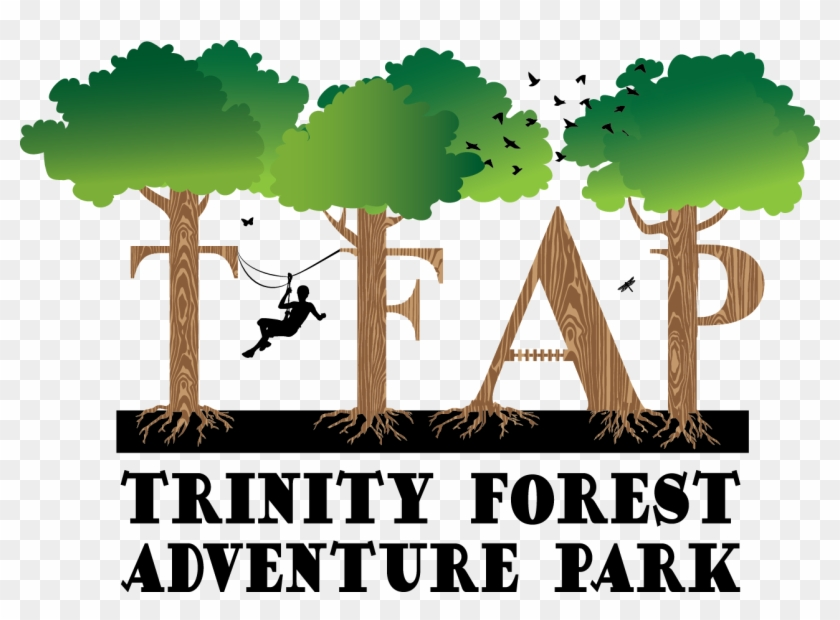 Tfap Logo - Trinity Forest Adventure Park #384610