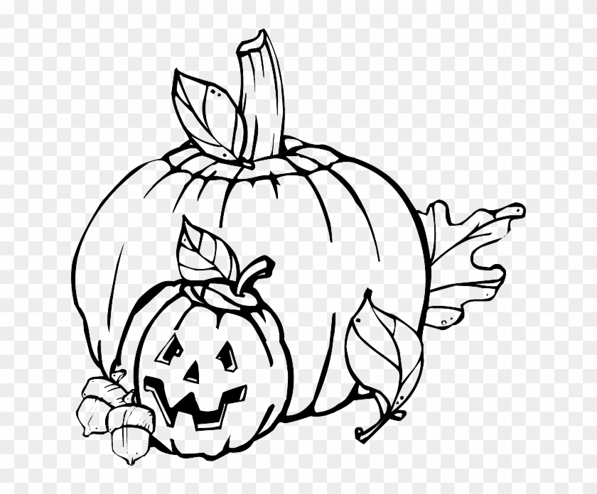 Fall Pumpkin Outline Drawing Jack Leaf Black And White