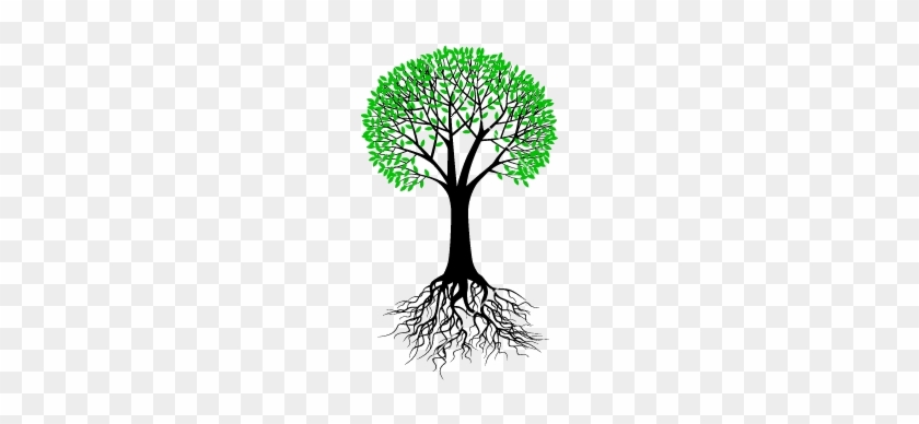 Tree Branch Vector Png About Us - Tree With Roots Vector #385074