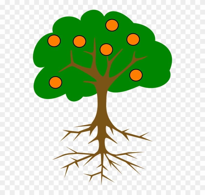 Cartoon Orange Tree - Tree With Roots And Fruits #385450