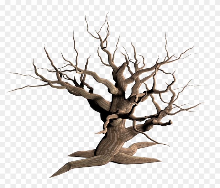 Cartoon Dead Tree 8 Buy Clip Art Dead Tree Transparent Background Free Transparent Png Clipart Images Download Cartoon, boys and dead trees in winter transparent background png clipart. cartoon dead tree 8 buy clip art