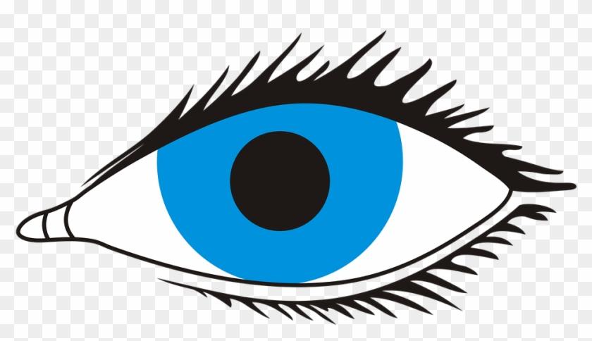 Auge Clipart Schwarz Weiß - Eye With No Background #385820