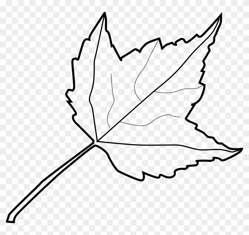 Leaf Drawing Outline At Getdrawings Com Free For Personal - Outline Image Of Leaf #386009
