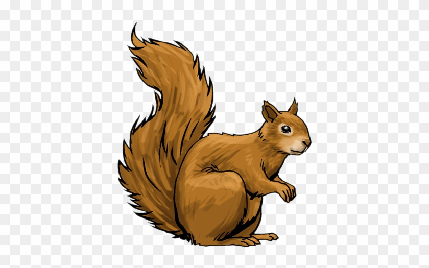 Squirrel Clip Art - Squirrel Clip Art #61449