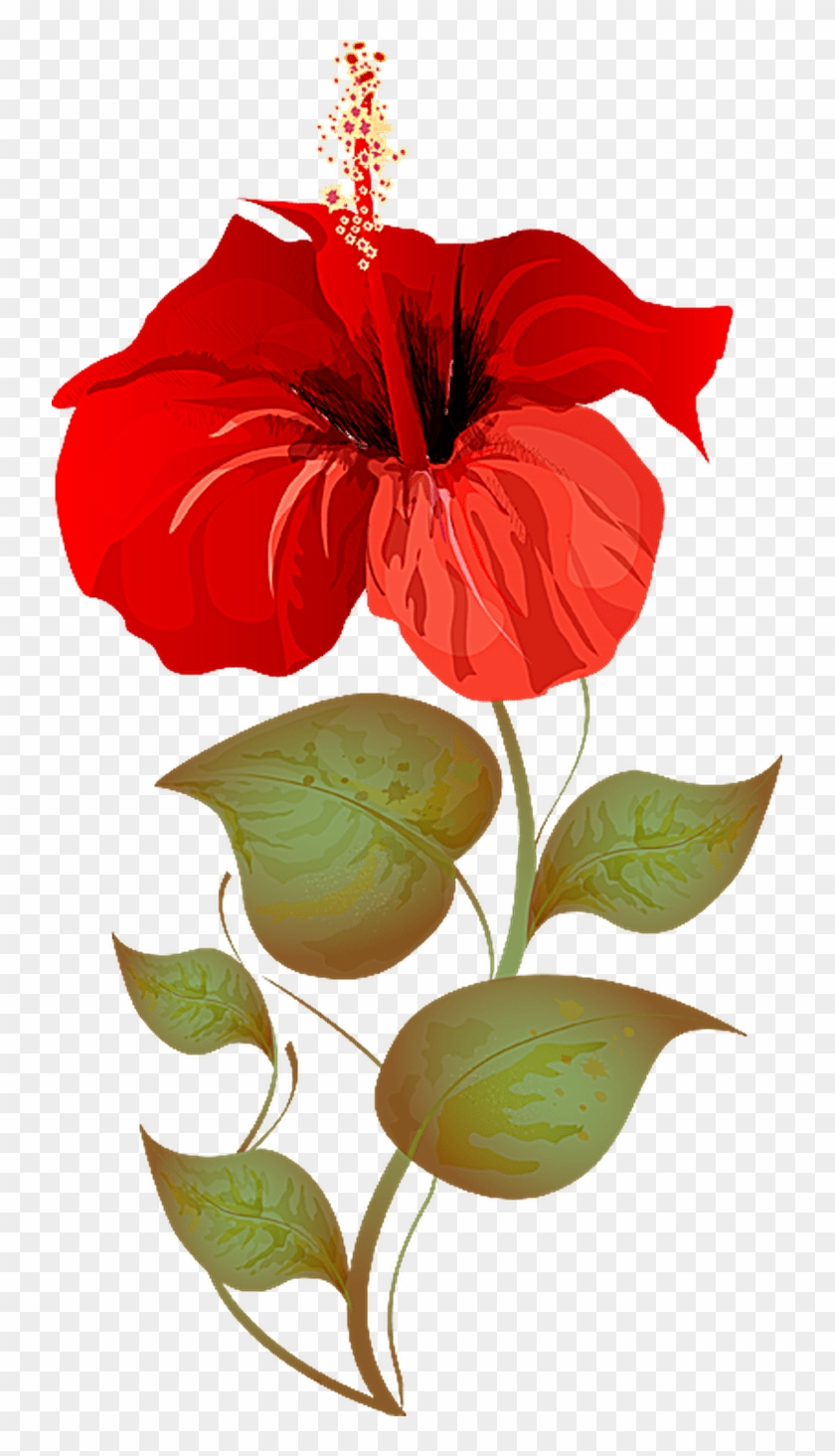 Craft Hibiscus Plant Clipart Free Transparent Png Clipart Images