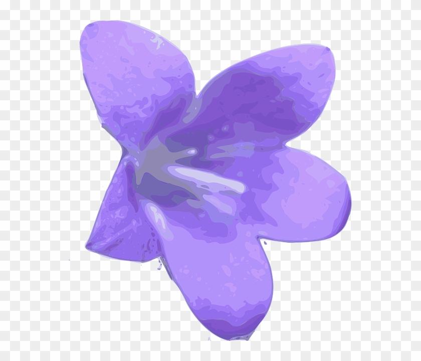 Larkspur Flower Png #62711