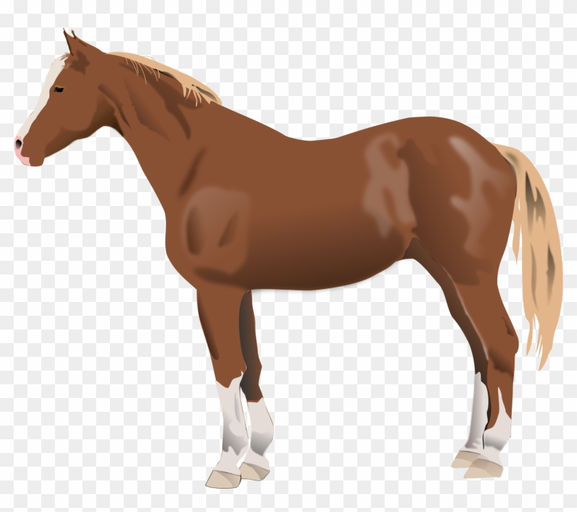 Horse - Lexington Parks And Rec #62812
