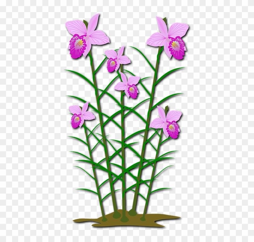 ภาพ ตัด ปะ ดอกไม้ #62844