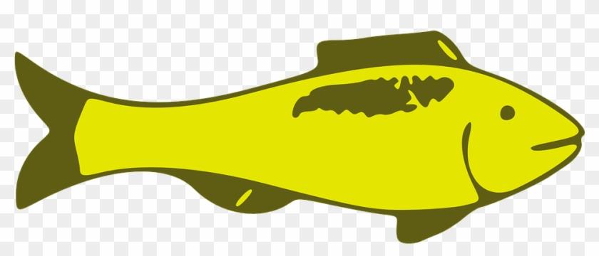 Custom Yellow Fish Shower Curtain #63682