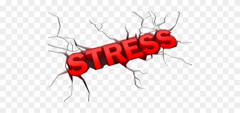 Word Stress #63945