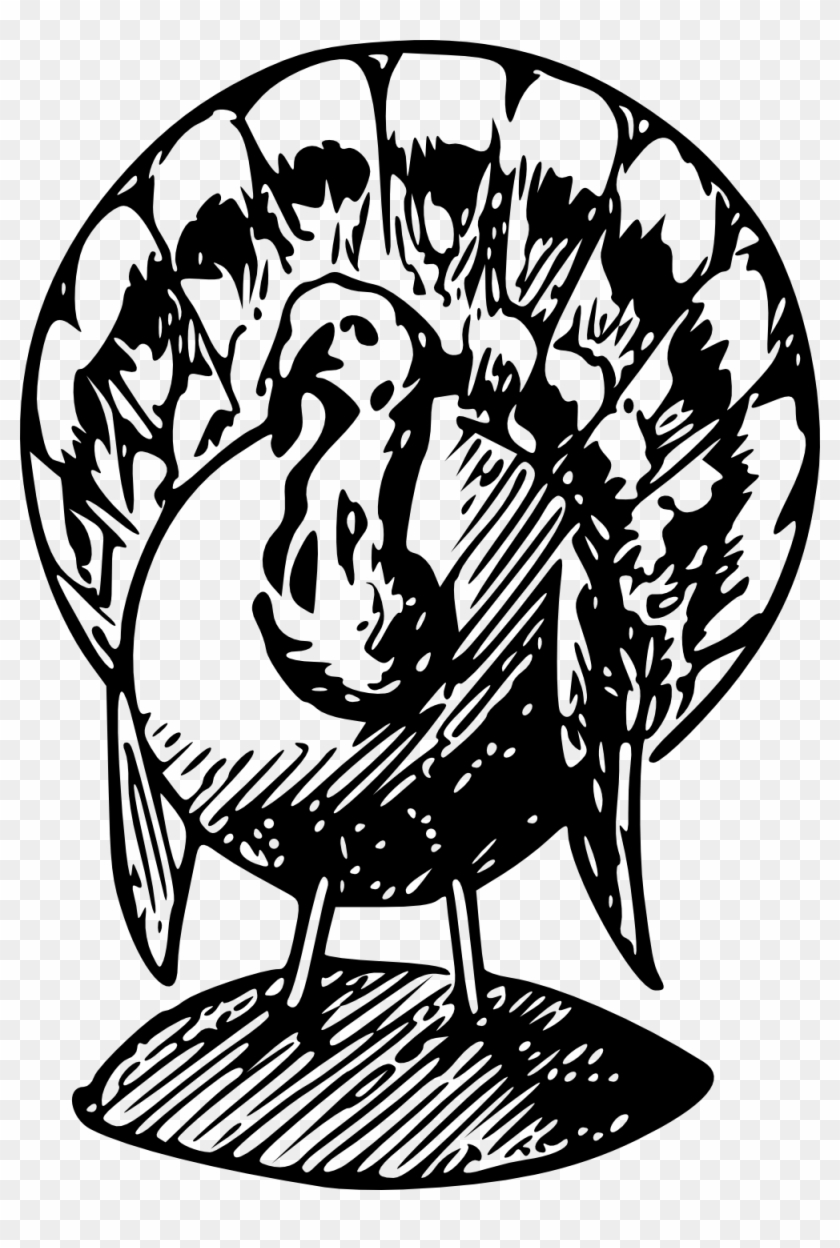 Turkey Black And White Black And White Turkey Clipart - Turkey Png Black And White #64034