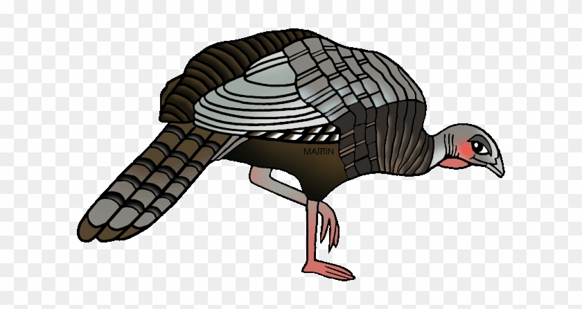 Wild Turkey Clip Art - Wild Turkey Clip Art #64094
