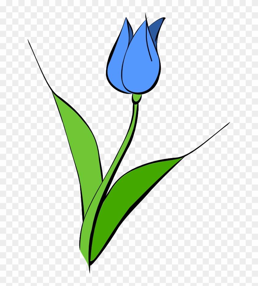 Film Reel Clipart - Blue Tulip Clipart #64856