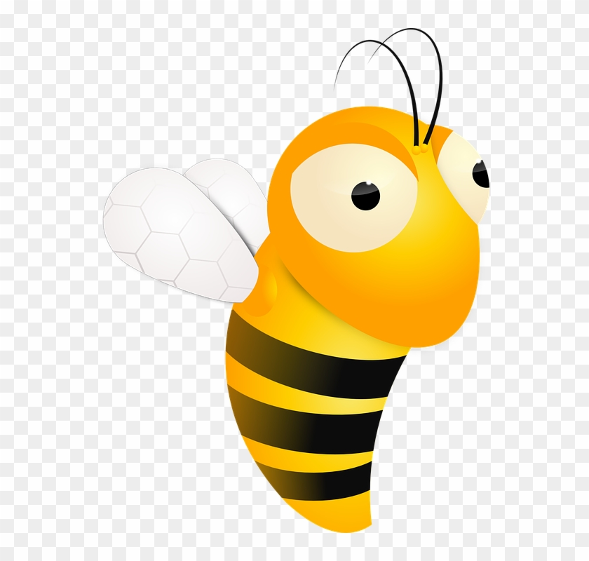 Bee Bumble Insect Bumblebee Wasp Bee Bumbl - Moving Honey Bee Animation #65363