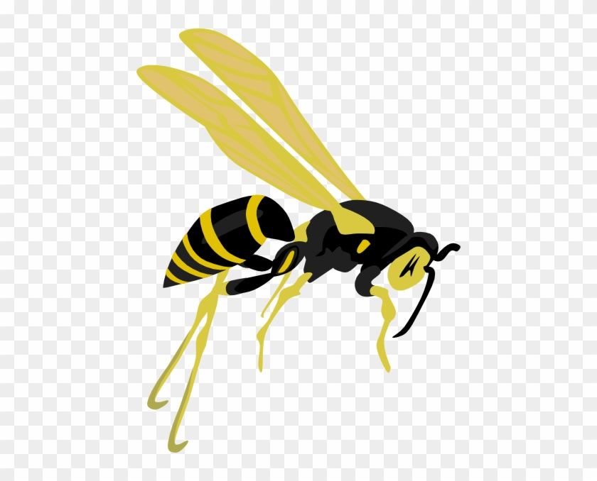 Flying Wasp Clip Art - Wasp Clipart #65454