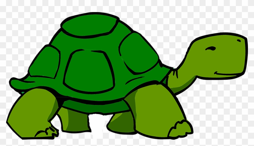 Turtle Images Cartoon - Slow Clipart #65578
