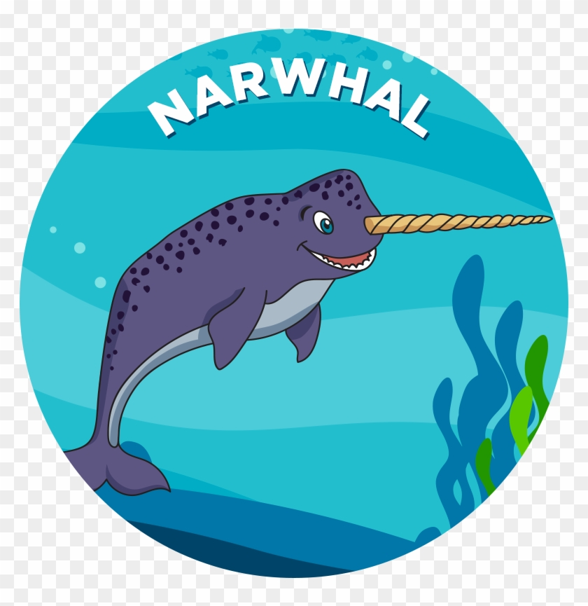 Narwhal - Killer Whale #67599