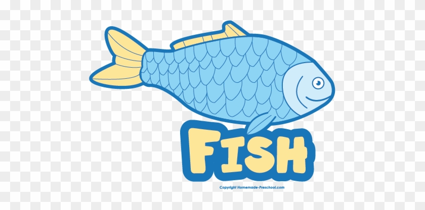 Free Food Groups Clipart Fish With Names Fish Clipart Name Free Transparent Png Clipart Images Download