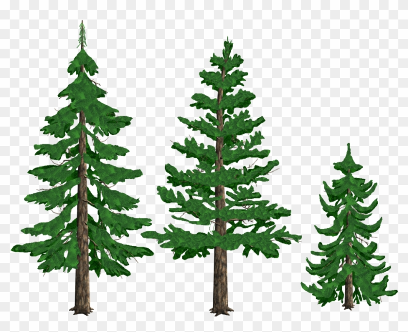 Pine Trees By Tyke44060 On Deviantart - Pine Tree Drawing Png #387597