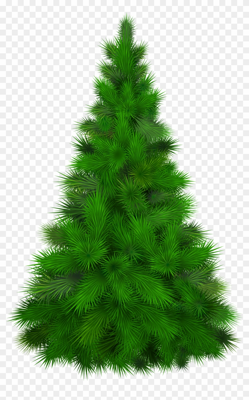 Green Pine Tree Png Clip Art - Pine Tree Clipart Png #387629
