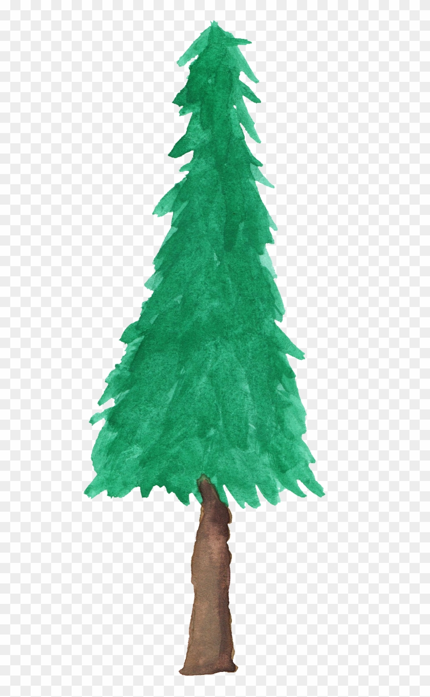 Free Download - Watercolor Pine Tree Png #387677