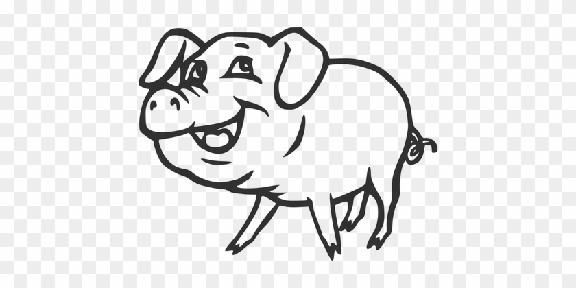 Farm Pig Smiling Animal Tail Pork Curly Sm - Pig Black And White #388354