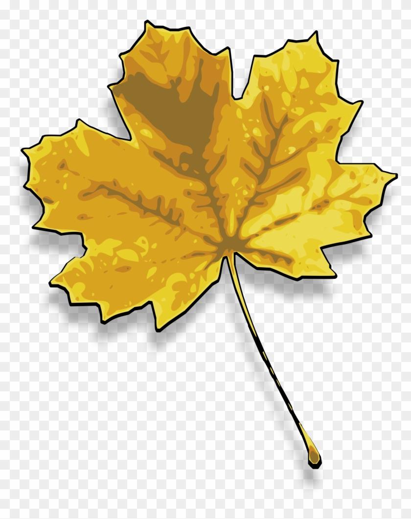 Big Image - Yellow Maple Leaf Clip Art #388433