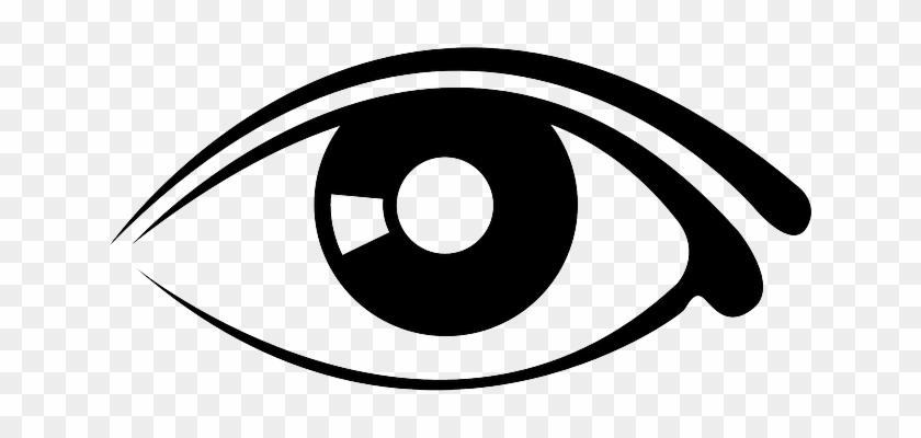Eyes, Eye, Part, Human, Cartoon, Eyeball, Free, Body - Eye Graphic #388690