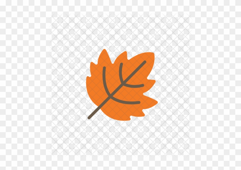 Autumn Flat Leaf Leaves Orange Fall Icon Fall Icon Free Transparent Png Clipart Images Download