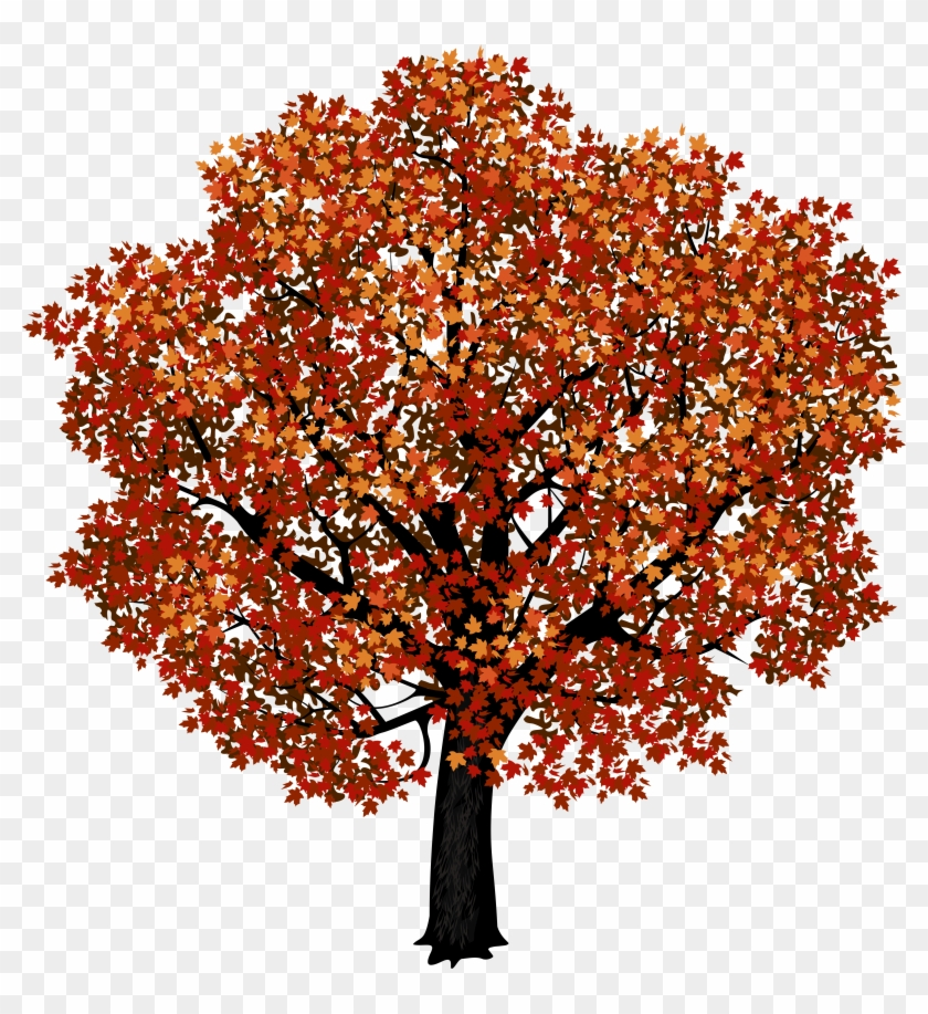 Red Maple Tree Png Clipart Picture - Autumn Maple Tree Png #388918