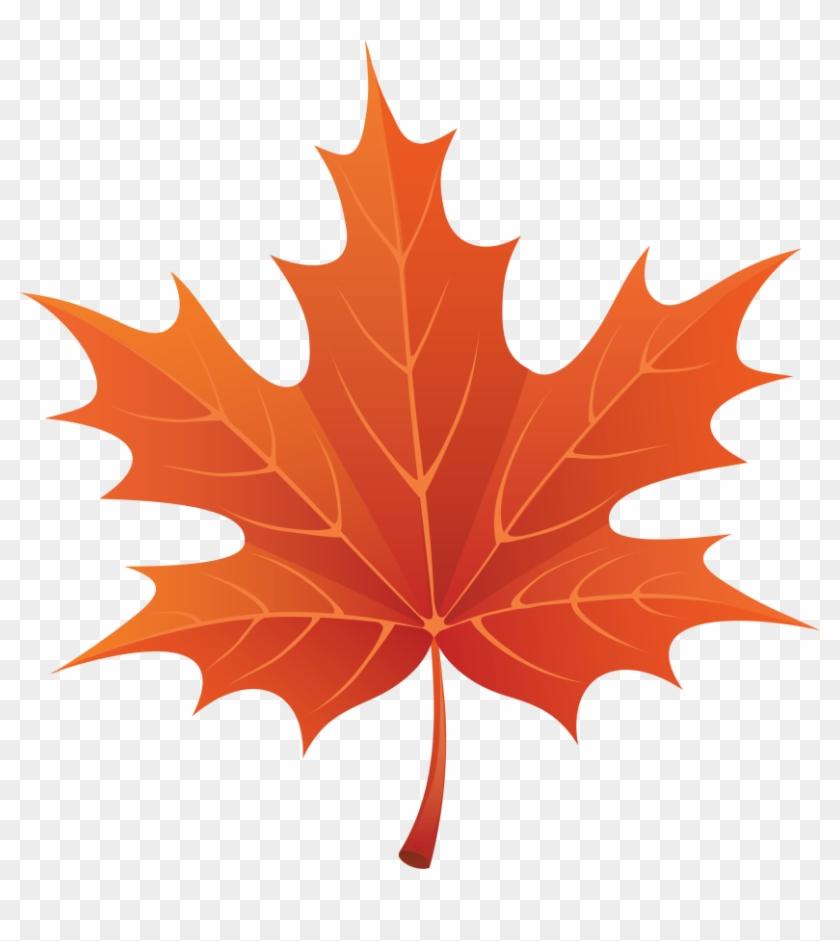 Single Leaf Clipart Kid - Autumn Leaf Clip Art #389581